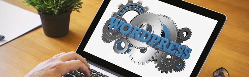 worpress-website-on-laptop-view