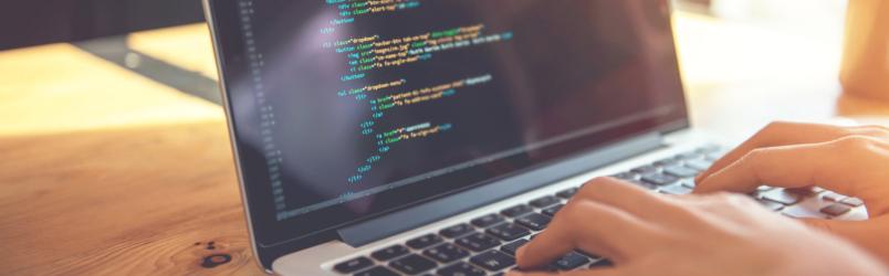 website-programmer